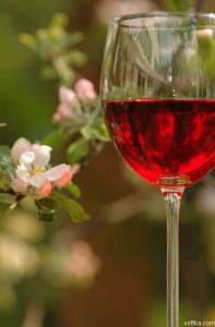вино из лепестков роз, рецепт вина хорошего